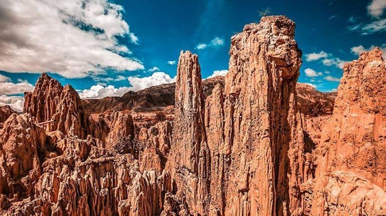 La Paz to Salta Travel Pass