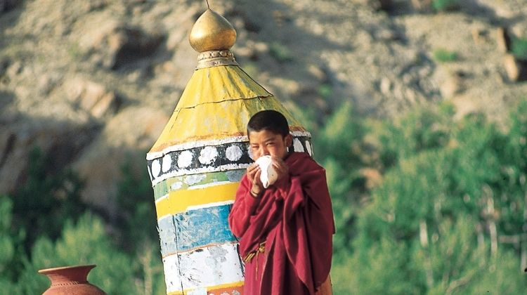 Ladakh: The Markha Valley