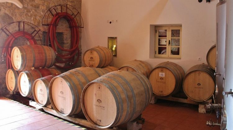 Lisbon Northern Region Wine-tasting Tour