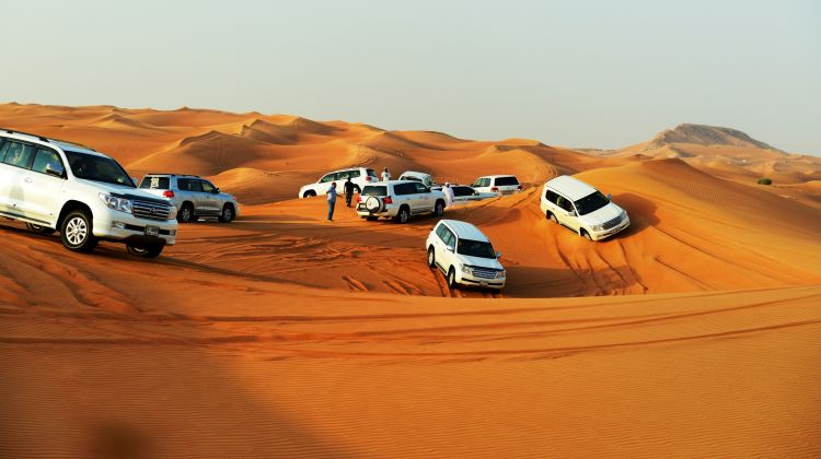 Liwa Safari from Abu Dhabi