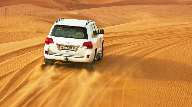 Liwa Safari from Abu Dhabi