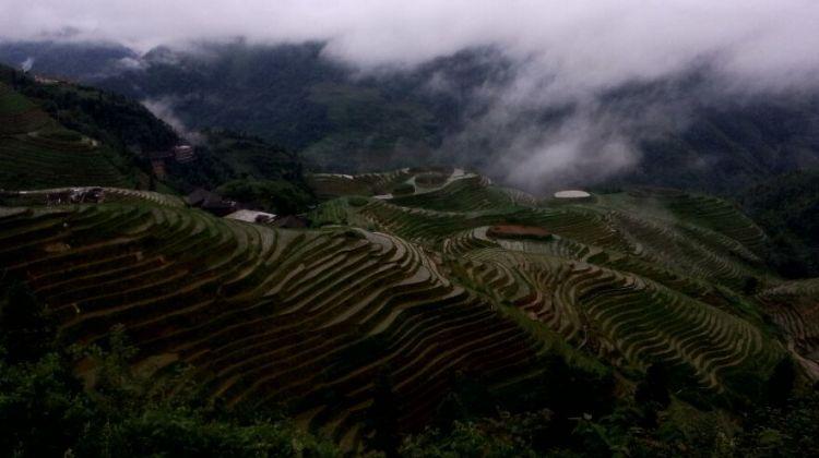 Longji rice terraces day tour(group tour)