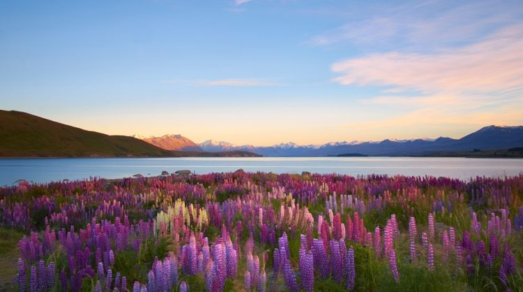 Luxury self-drive tour of New Zealand
