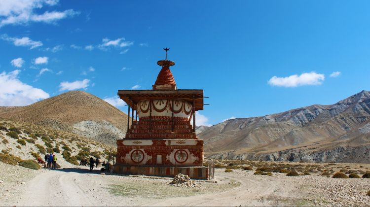 Magical Upper Mustang