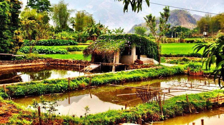 Mai Chau Full Day Tour From Hanoi