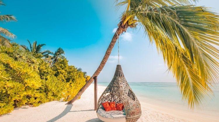 Maldivian Delight, Private Tour