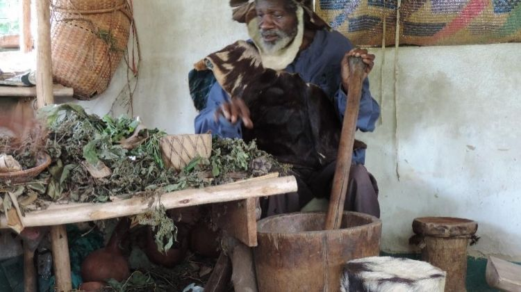 Meet Traditional Health Practitioners of Kampala