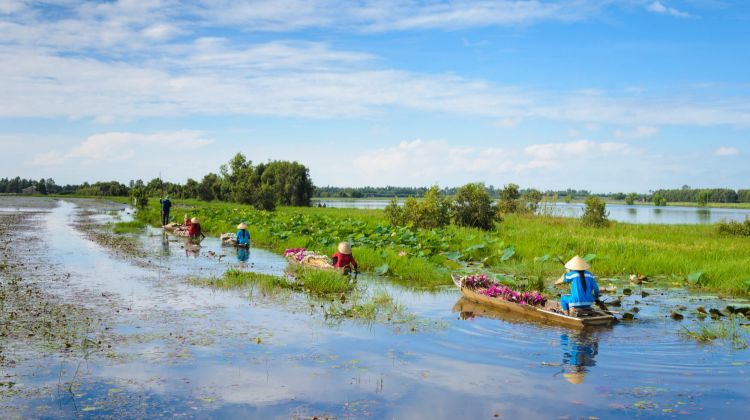 Mekong Delta: Kayaking and Cooking Class
