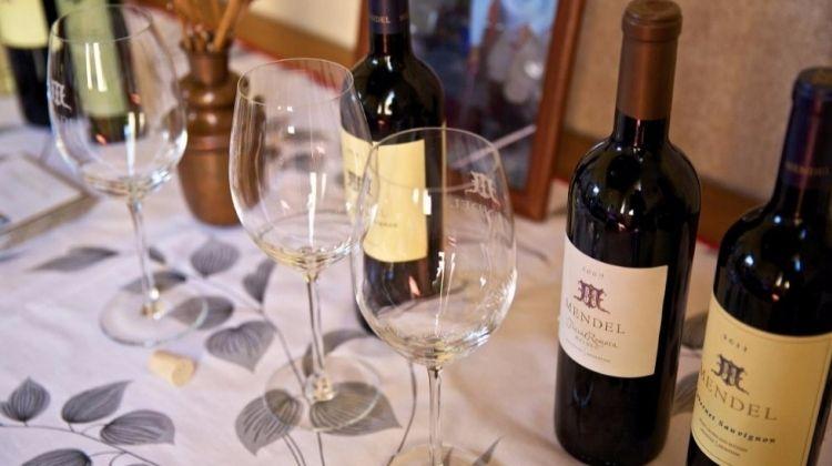Mendoza Wine Tour