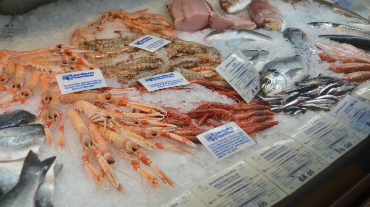 Mercato Centrale  & San Lorenzo Market Food Lovers Tour