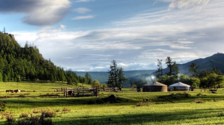 Mongolia Expedition: Wilderness of the West