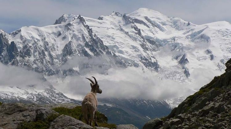 Image result for mont blanc supercar driving route