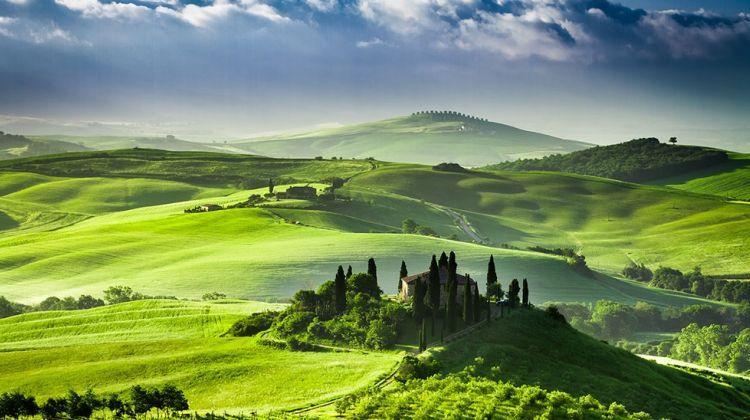 Montalcino, Pienza & Montepulciano Tour from Florence