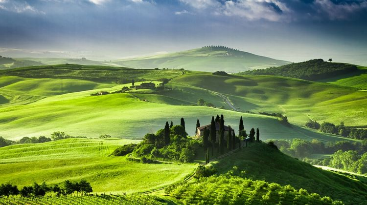 Montalcino, Pienza and Montepulciano Tour from Siena