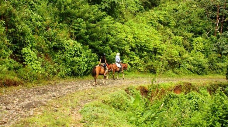 Monteverde Horseback Riding