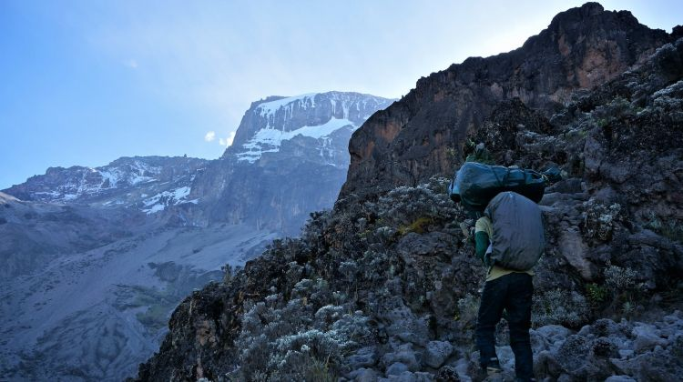 Mount Kilimanjaro Lemosho Route: Eight Days