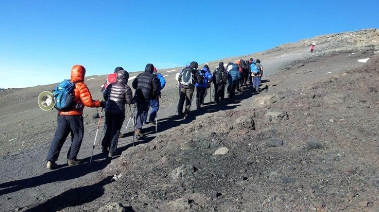 Mount Kilimanjaro-Rongai route 7 Days Climb