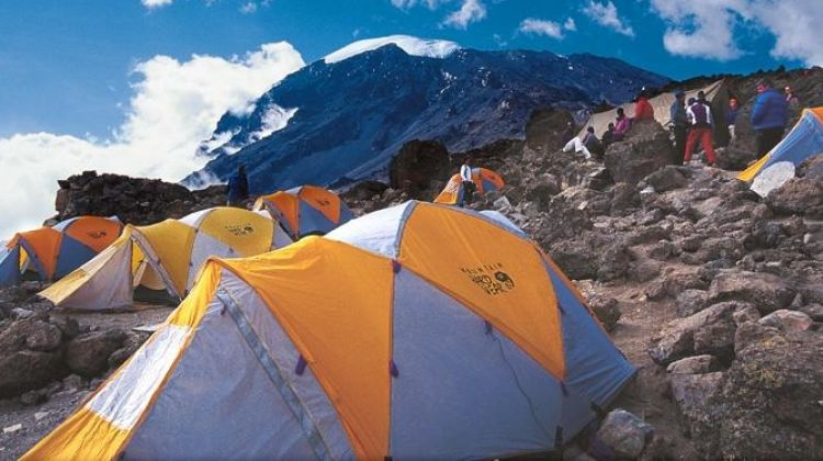 Mount Kilimanjaro-Shira Route 8 Days Climb