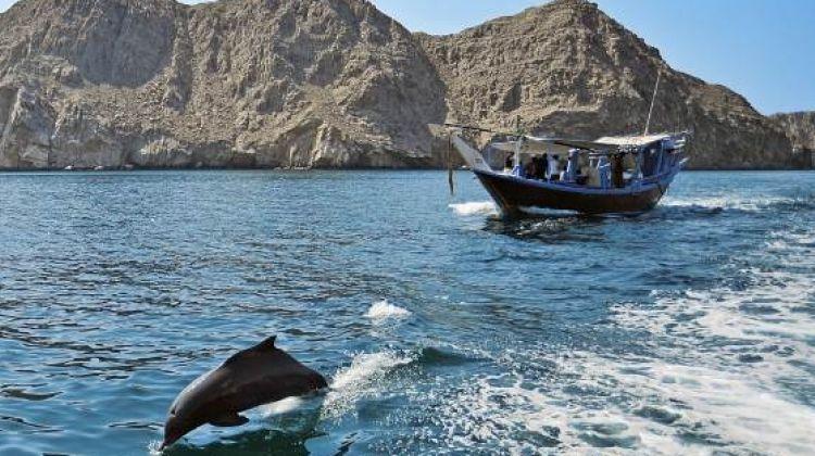 Musandam khasab cruise- day trip package