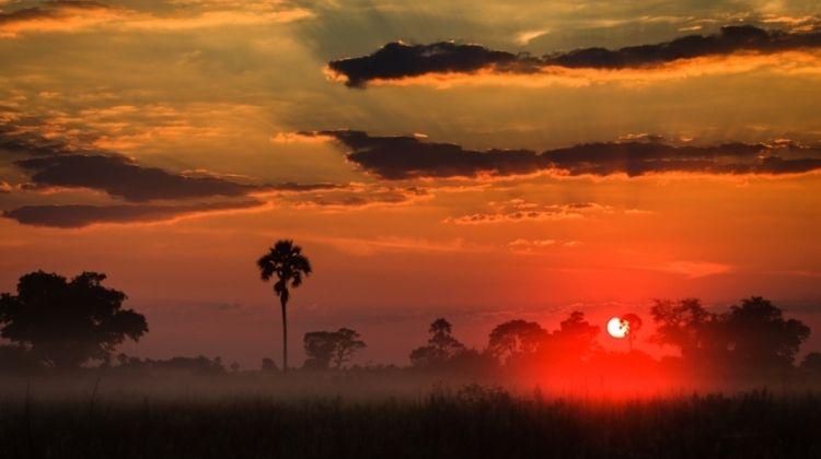 Namibia & Botswana Wanderer