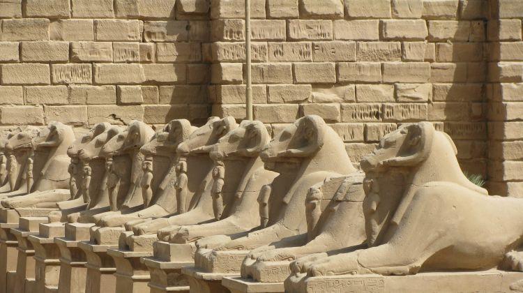 Nile Adventure: Felucca Cruise & the Red Sea