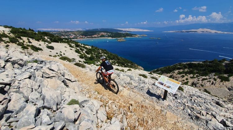 Northern Adriatic Islands Cycling: Premium Tour