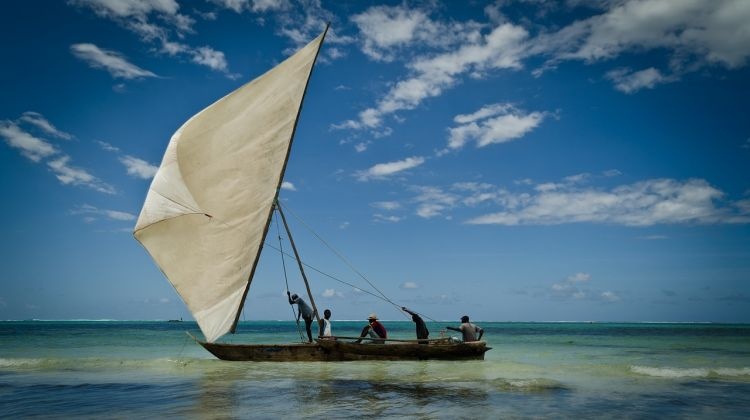 Northern Tanzania Safari and Zanzibar Visit