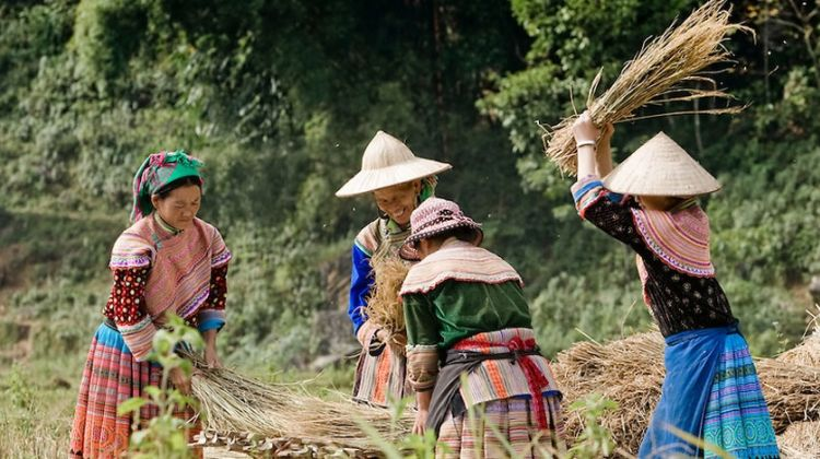 Northern Vietnam Sapa Tour 3 days