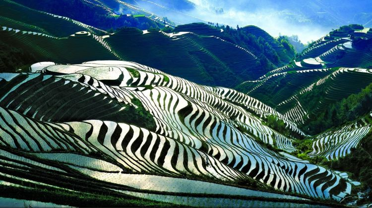 One Day Longji Rice Terraces Tour