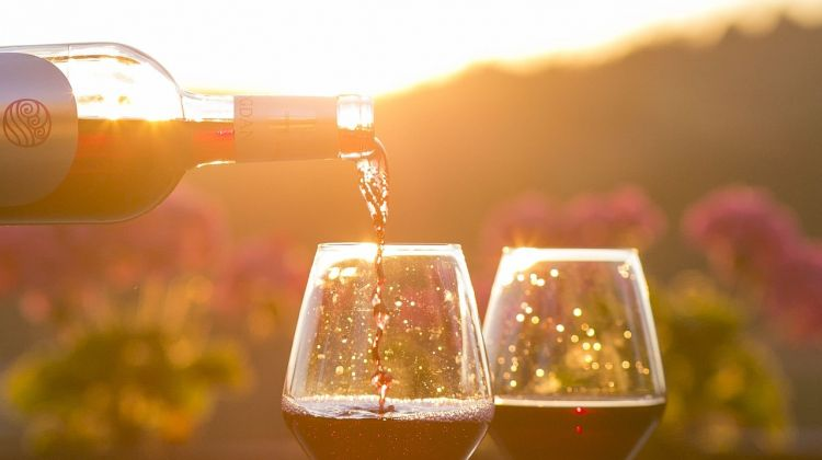 Organic & Biodynamic Sustainable Wine Experience