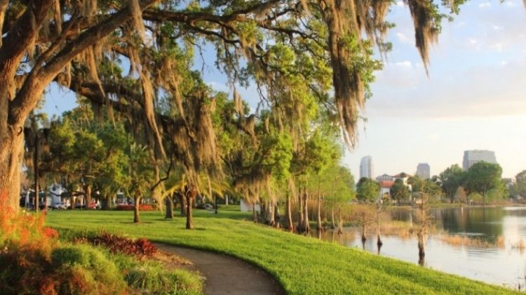 Orlando: Sightseeing, Craft Beers & More