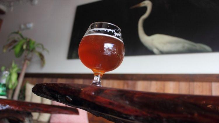 Orlando: Sightseeing, Craft Beers & More