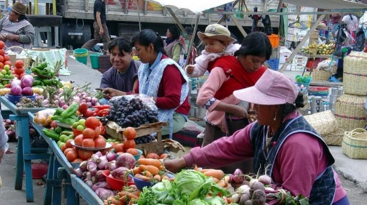Otavalo Culture and Bird-Watching Tour