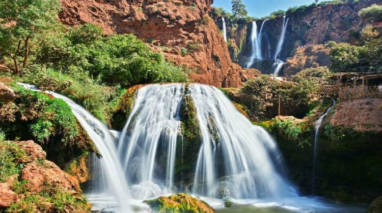 Ouzoud Waterfalls Full-Day Trip from Marrakech