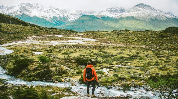 Patagonia & Jungle
