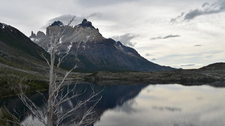Patagonia Trek: Lago Grey & Lago Nordenskjöld in 3 Days