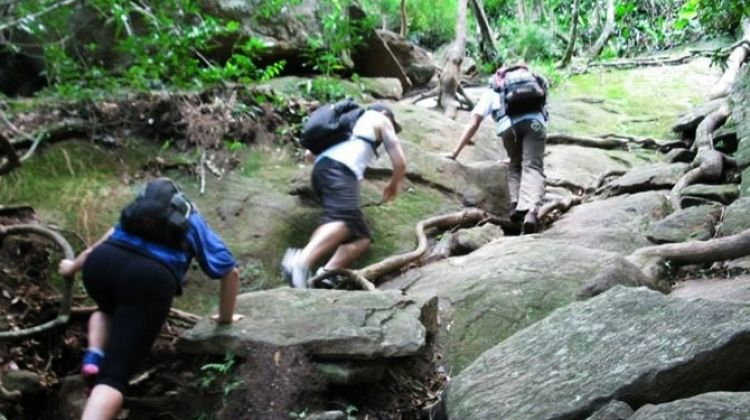 Pedra da Gavea Guided Private Hiking tour