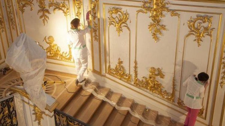 Peterhof Palace & Park Join-in Small Group Tour