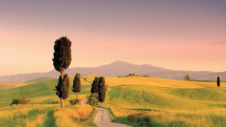 Pienza and Montepulciano Tour from Siena