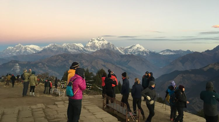 Poonhill Tea House Trek 7-Days