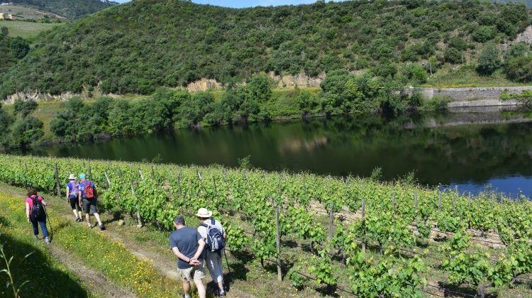 Portugal: Walking & Wine
