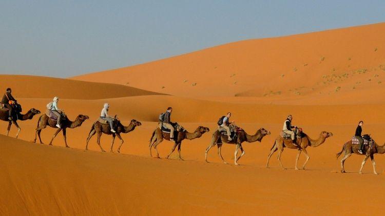 Premium Morocco in Depth