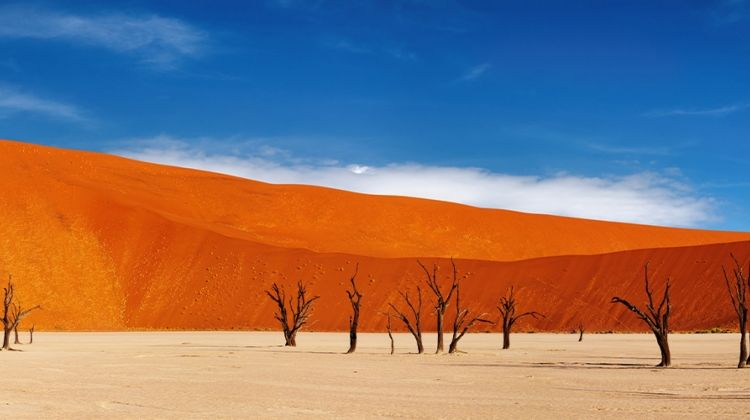 Premium Namibia