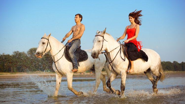 Private Beach, Rainforest & Mangrove Horseback Ride
