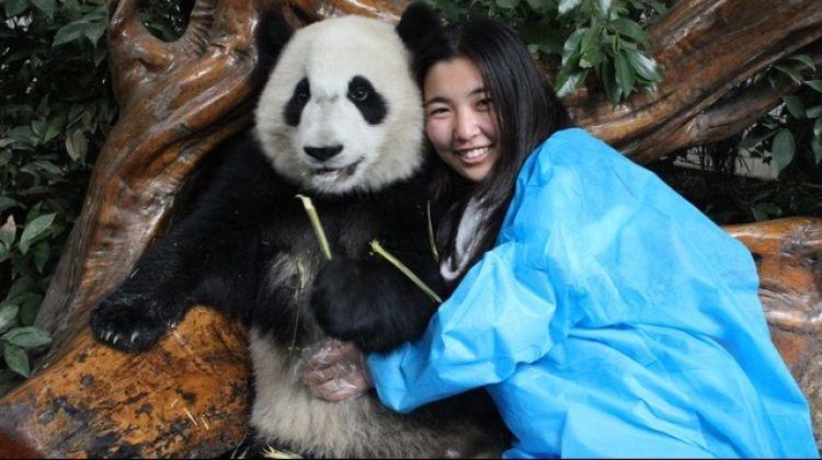 Private Chengdu Panda Tour - Full-Day Adventure