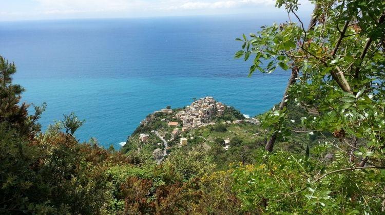 Private Cinque Terre: Tasting Cinque Terre
