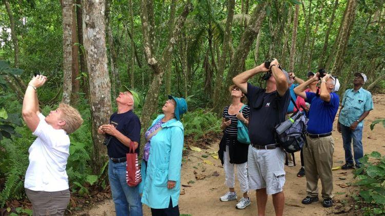 Private Crocodile Safari Expedition & Carara Park