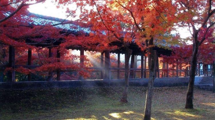 Private Kyoto: City of Culture