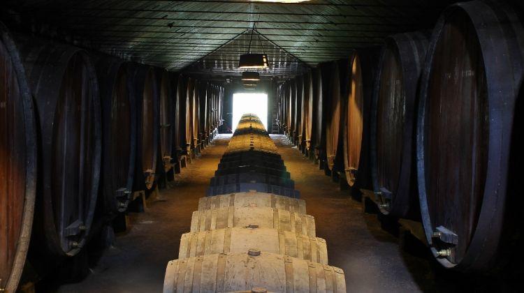 Private Setúbal Wine Tasting Tour