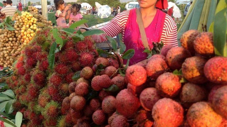 Private Siem Reap: Street Food by Night